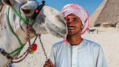 """""""هنا مصر """".. مقترحات لدعم وتطوير السياحة المصرية"""